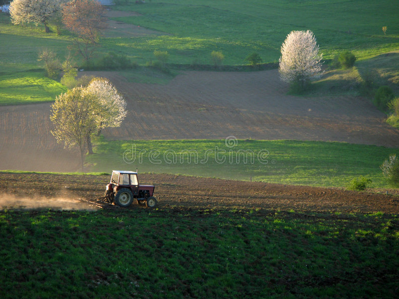 Download Cultivating the landscape stock photo. Image of panoramic - 5796382