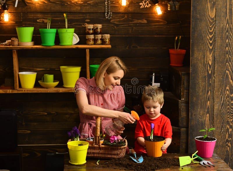 cultivation cultivo da terra com família feliz conceito do cultivo e da agricultura Trabalho no ambiente verde fotografia de stock