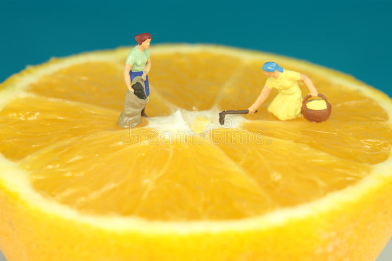 Cultivation on orange stock images