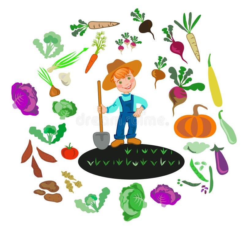 Cultivation of vegetables. Happy boy farmer grows vegetables stock illustration