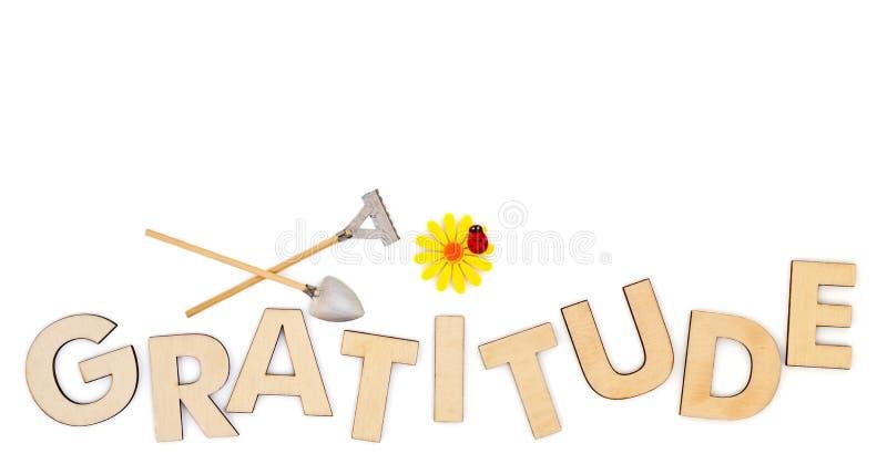 Cultive o conceito da gratitude com letras principais de madeira ilustração stock
