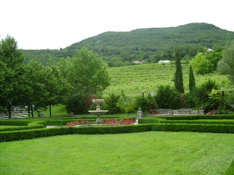 Cultive un huerto en la colina cerca del castillo, Eslovenia fotografía de archivo libre de regalías