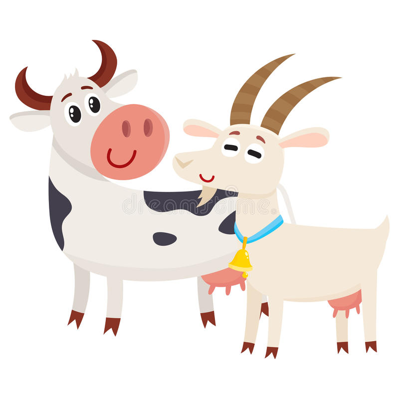 Cultive a vaca manchada preto que olha a cabra de sorriso branca ilustração do vetor