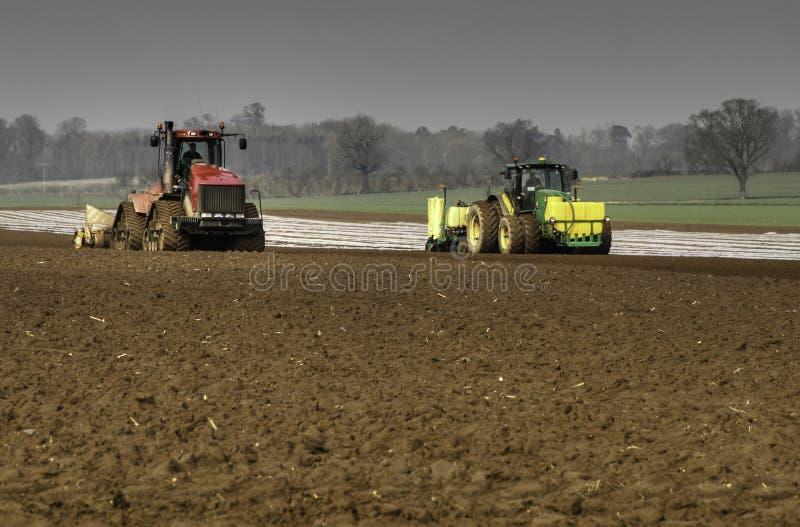 Cultiverend land en borend Maïs royalty-vrije stock foto