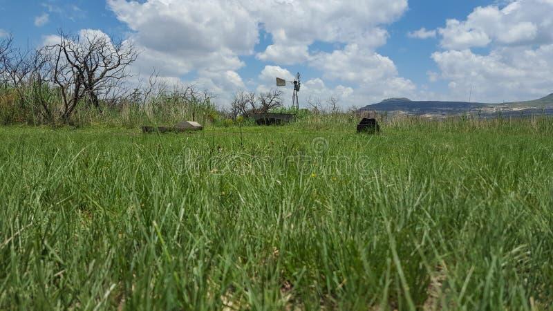 Cultivez avec la pompe de vent et le conducteur de bétail en Afrique du Sud photos libres de droits