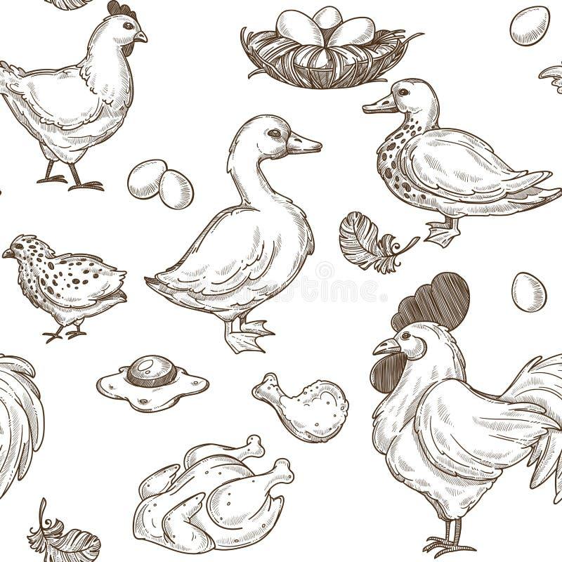 Cultivez avec le vecteur de modèle d'oies et de poules, de coq et d'oeufs illustration stock