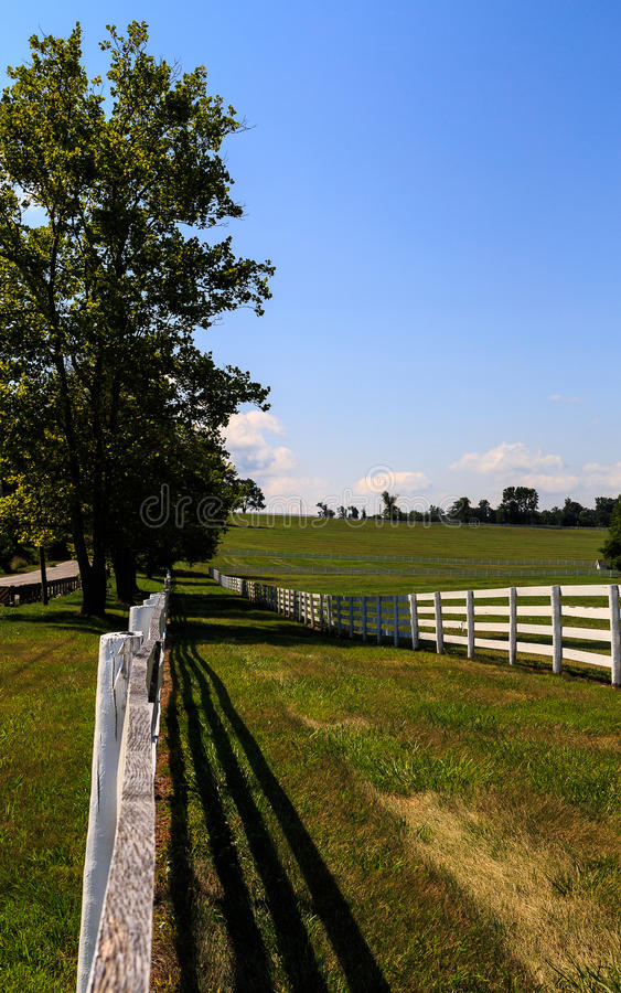 Cultivez dans le Maryland avec la barrière blanche fraîchement peinte photographie stock