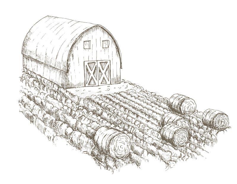 Cultivez la maison avec des champs des cultures l'entourant illustration de vecteur