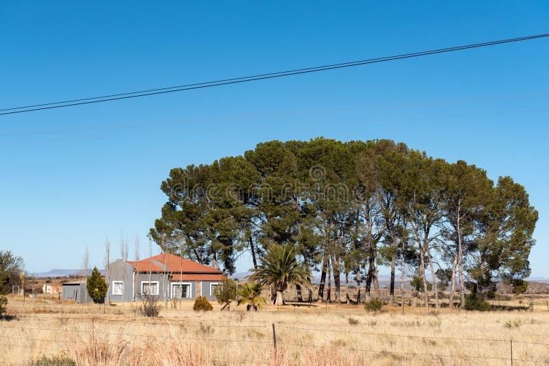 Cultivez la scène, avec une maison et des arbres, près de Luckhoff images stock