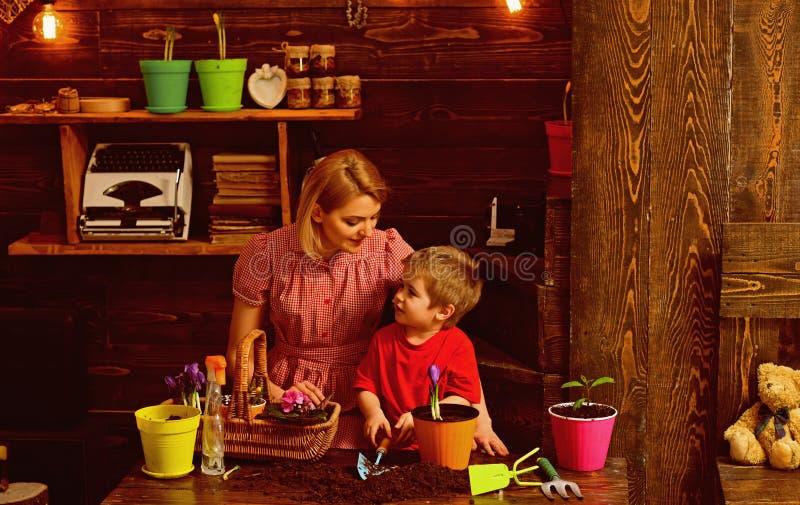 Cultivez le concept La mère et le fils cultivent la fleur dans le pot Mère et enfant cultiver la fleur mise en pot Cultivez le so photo libre de droits