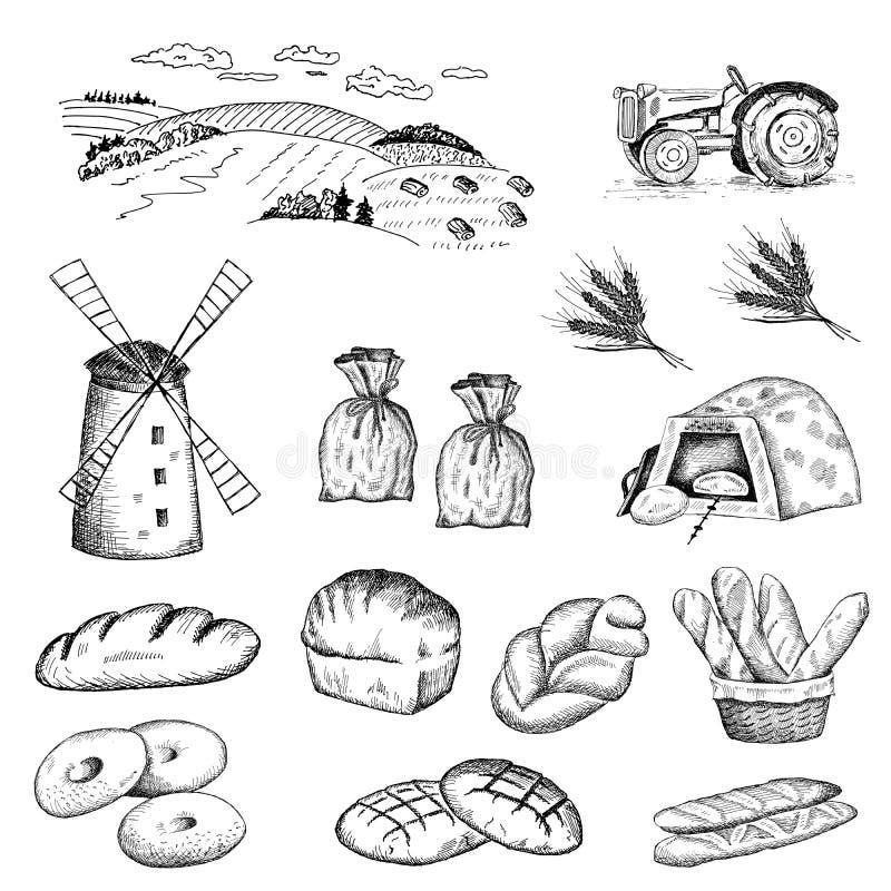Cultivo de la hornada del trigo y del pan stock de ilustración
