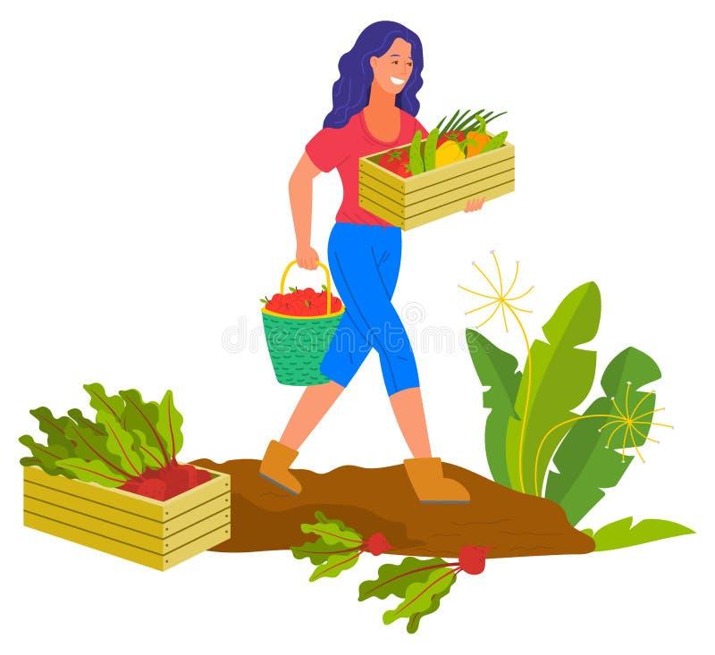 Cultivo de la mujer que sonríe cosechando el granjero Plantation libre illustration