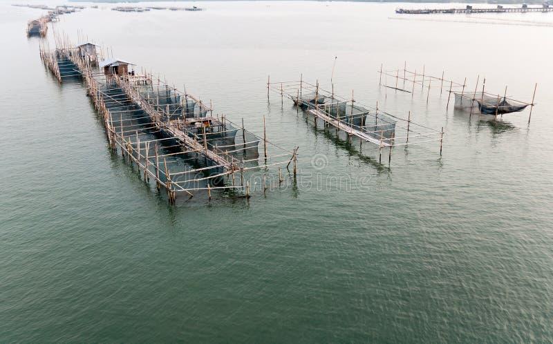 Cultivo de los peces marinos fotografía de archivo libre de regalías