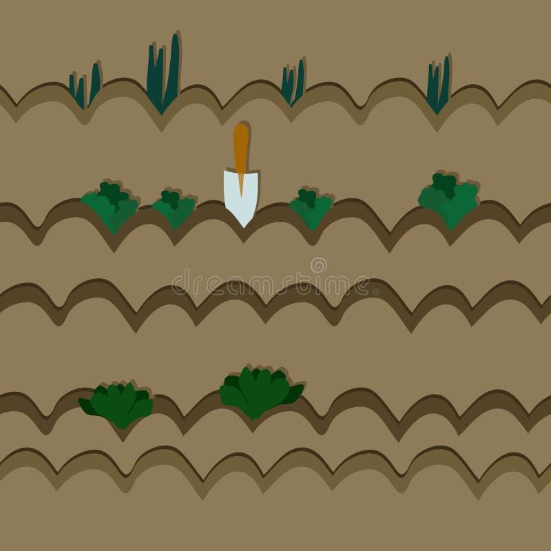 Cultivo de verduras ilustración del vector