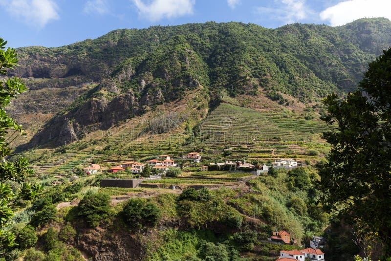 Cultivo del pueblo y de la terraza en los alrededores del sao Vicente Costa del norte de la isla de Madeira, fotos de archivo