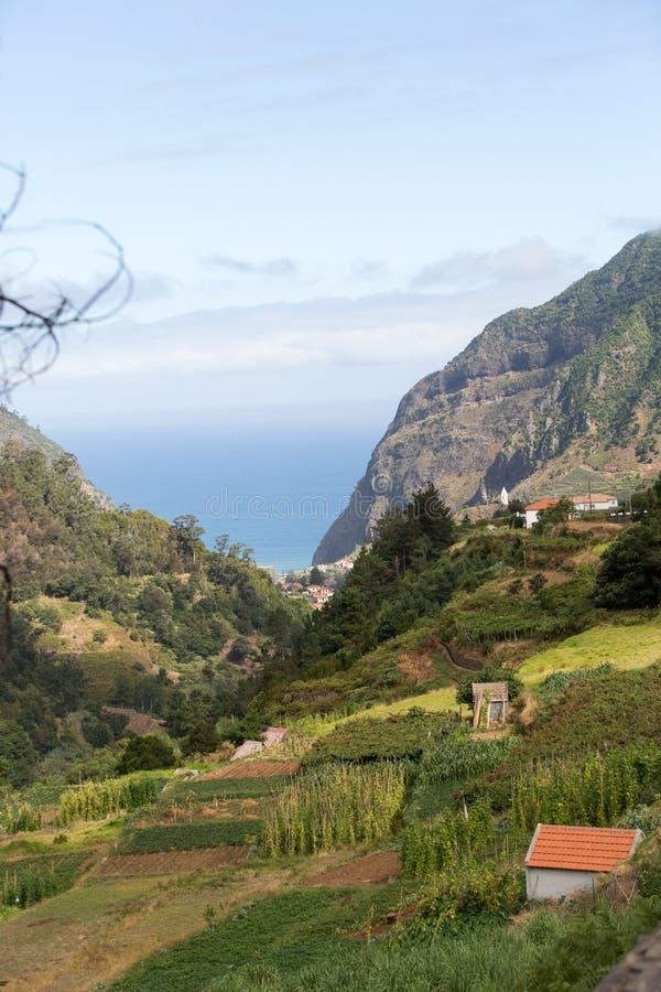 Cultivo del pueblo y de la terraza en los alrededores del sao Vicente Costa del norte de la isla de Madeira, fotografía de archivo