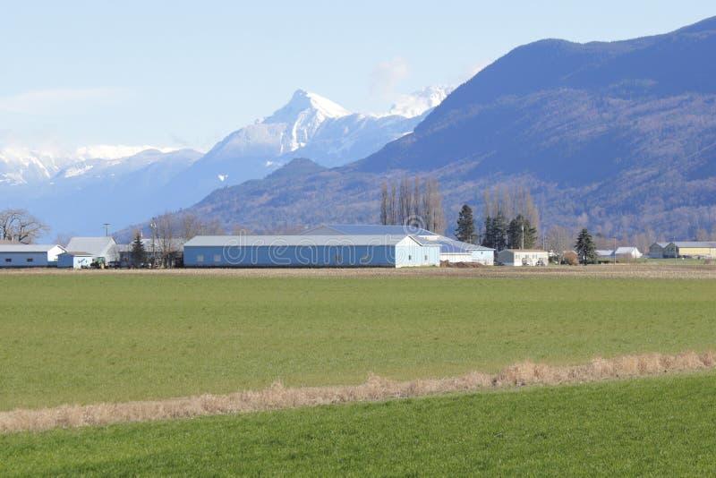 Cultivo do vale da montanha fotografia de stock royalty free