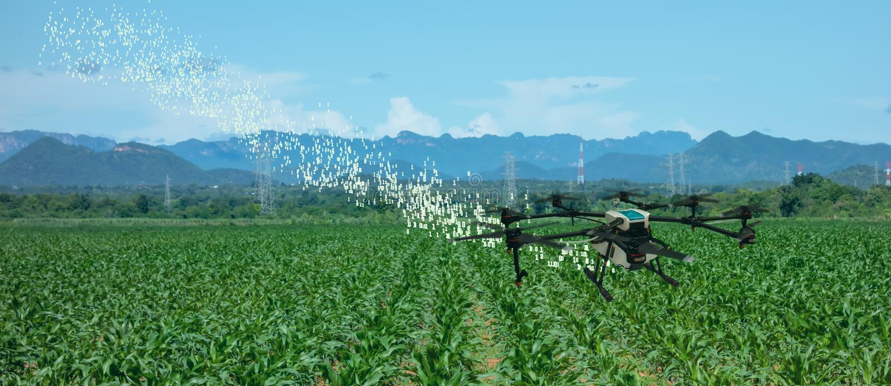 Cultivo esperto do zangão de Iot, agricultura na indústria 4 0 tecnologias, inteligência artificial, conceito da aprendizagem de  imagem de stock royalty free