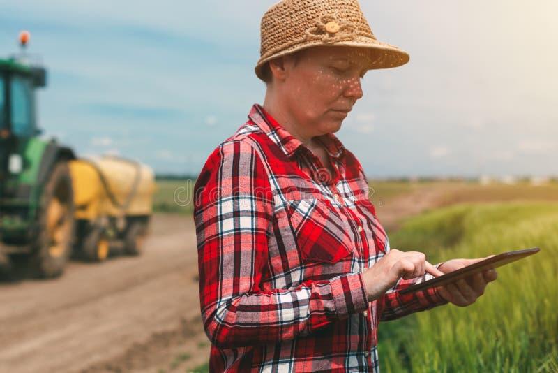 Cultivo esperto, usando a tecnologia moderna na atividade agrícola imagens de stock