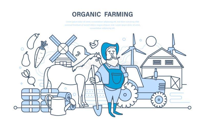 Cultivo orgânico, cultivo de produtos naturais, animais, elevação das habilidades ilustração do vetor