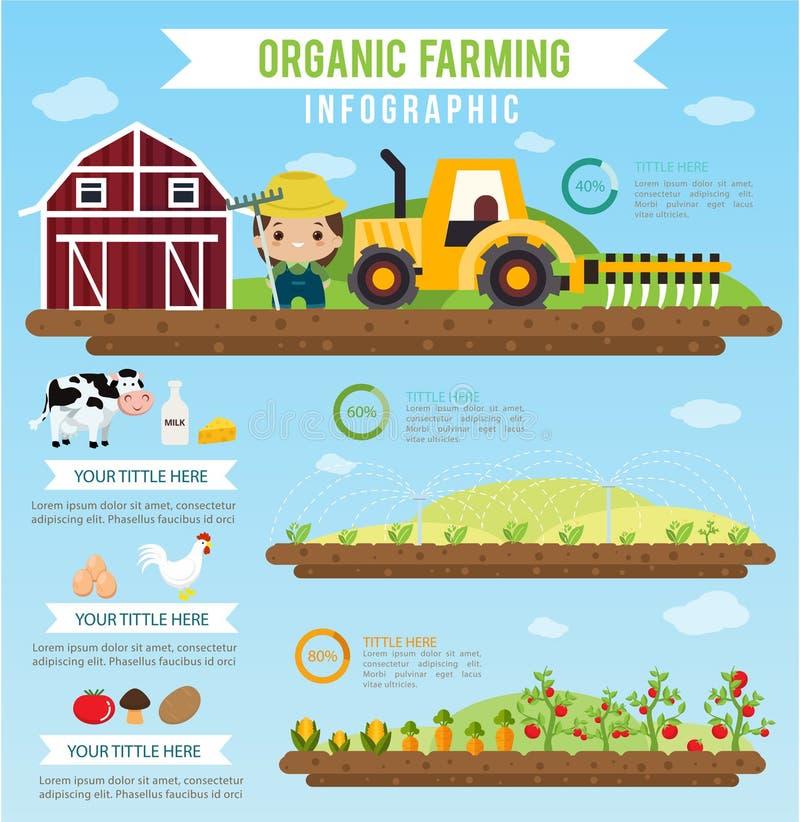 Cultivo orgânico e infographic saudável do alimento limpo ilustração royalty free