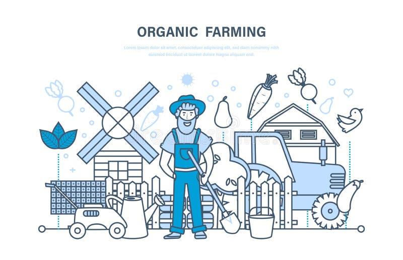 Cultivo orgânico, exploração agrícola e fazendeiro, cultivo de produtos naturais do eco ilustração stock