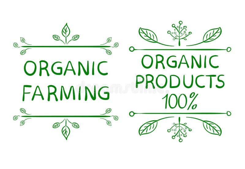 Cultivo orgânico Produtos orgânicos 100 Elementos tipográficos tirados mão do projeto ilustração stock