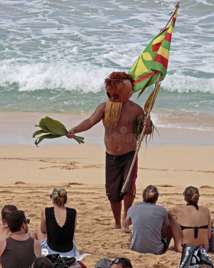 Cultura havaiana fotografia de stock