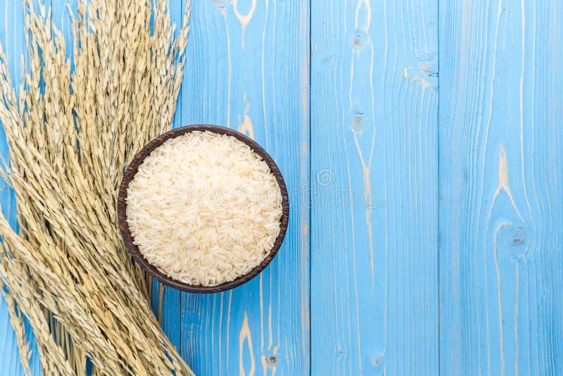 Culture de riz non-décortiqué et riz secs de jasmin dans la cuvette sur la BO en bois bleue images stock