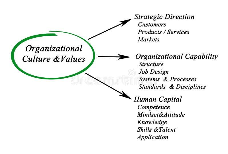 组织Culture&Values 库存例证