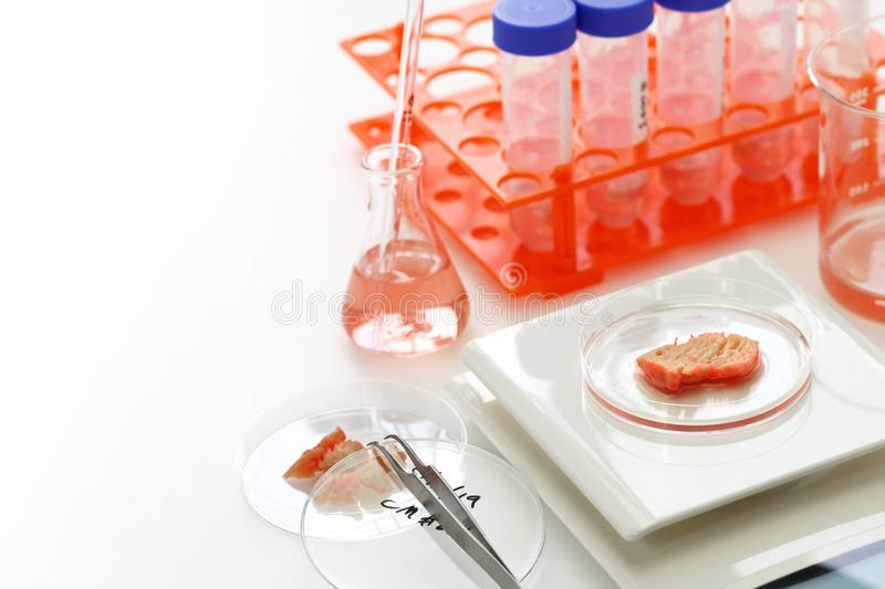 Cultured meat making image. Lab grown meat concept stock photography
