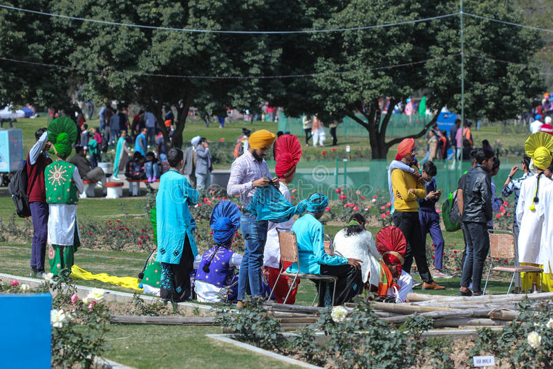 Culturele Rose Festival, toont, Chandigarh, India stock afbeelding
