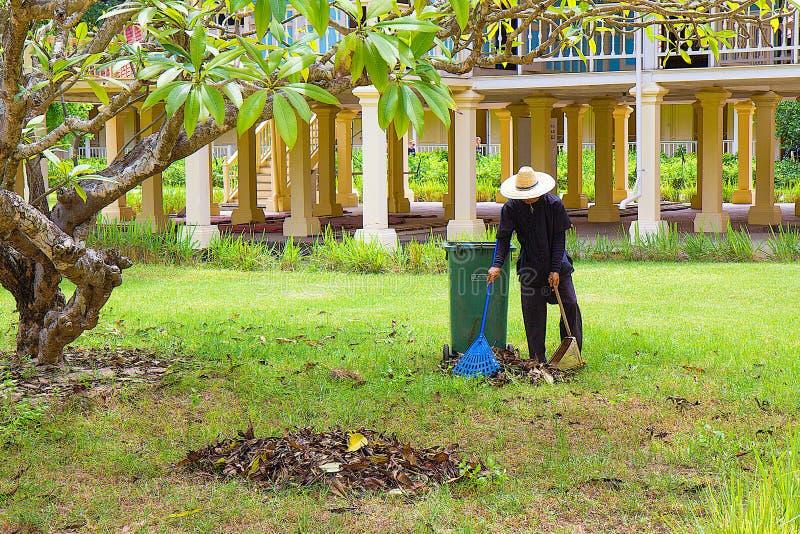 Cultures de plantation d'homme dans le jardin communal image libre de droits