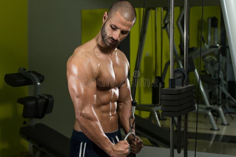 Download Culturista Che Esercita Il Tricipite Fotografia Stock - Immagine di muscolo, caucasico: 55354982