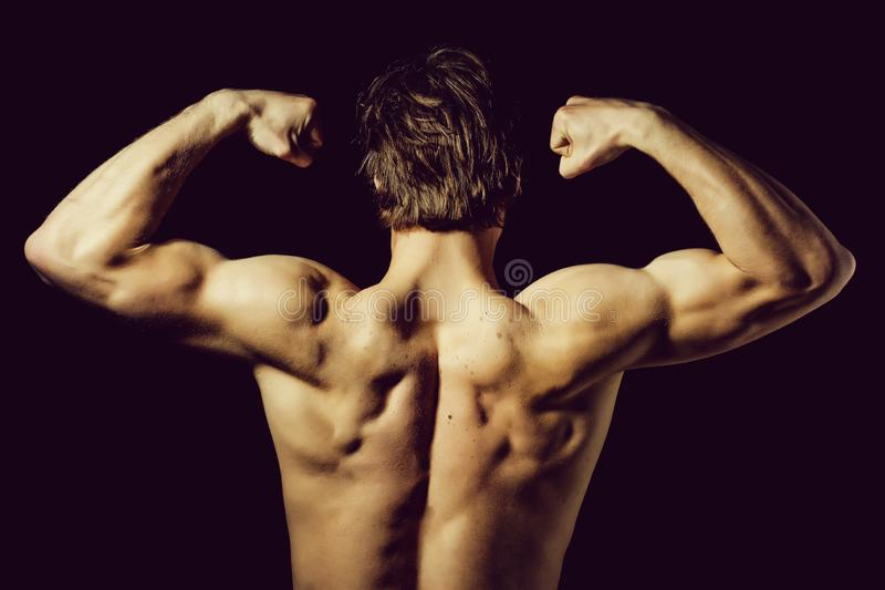 Culturista con el cuerpo muscular y la parte posterior atractivos foto de archivo libre de regalías