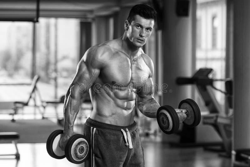 Culturista joven que ejercita el bíceps con pesas de gimnasia fotos de archivo libres de regalías