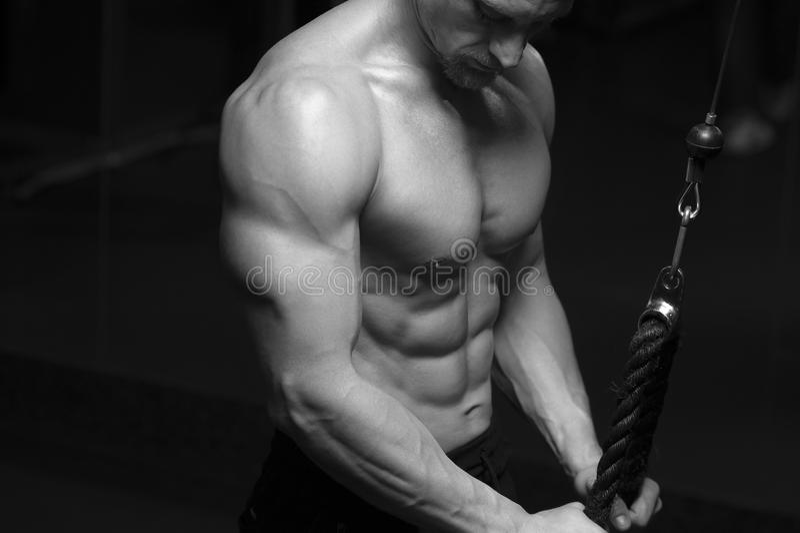 Culturista maschio muscolare che fa esercizio del tricipite immagine stock libera da diritti