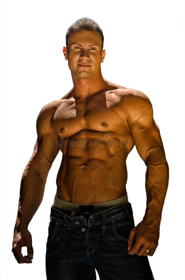 Culturista senza camicia bello e muscolare isolato su bianco immagini stock