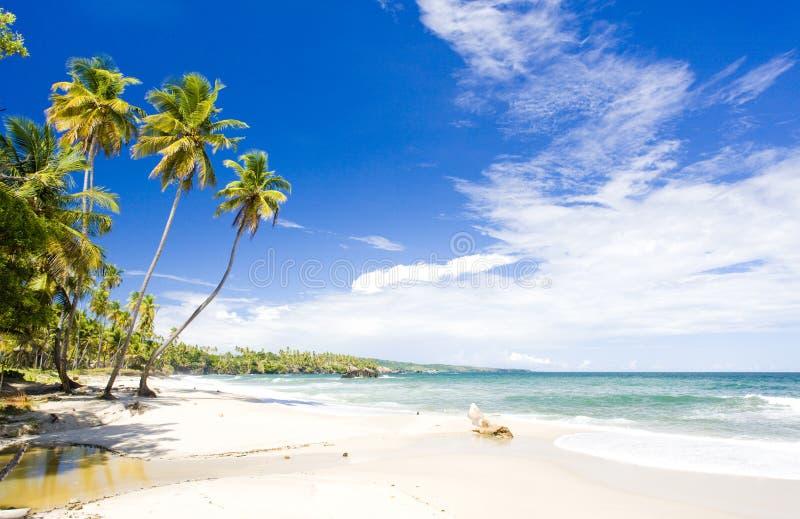 Download Cumana Bay stock image. Image of flora, calmness, destinations - 13821765