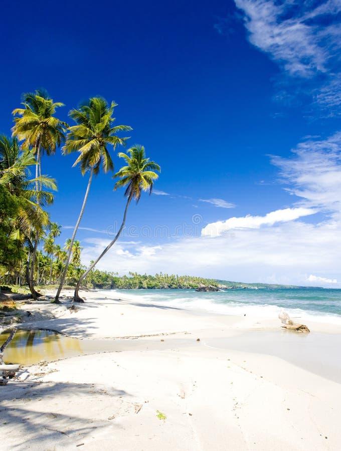 Cumanabaai, Trinidad stock fotografie