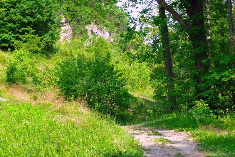 Download Cumberland Gap stock photo. Image of trees, green, virginia - 24272990