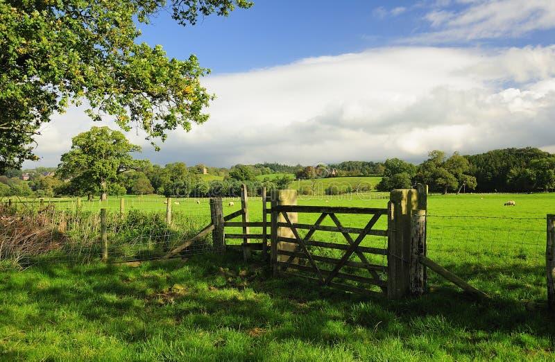 cumbriaen eden fields dalen royaltyfria foton