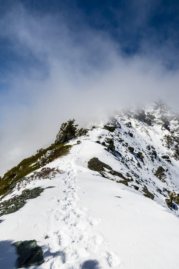 Cume rochoso na fuga para a parte superior da montagem San Antonio (Mt Baldy) em um dia nevado mas ensolarado, com a névoa que au imagem de stock