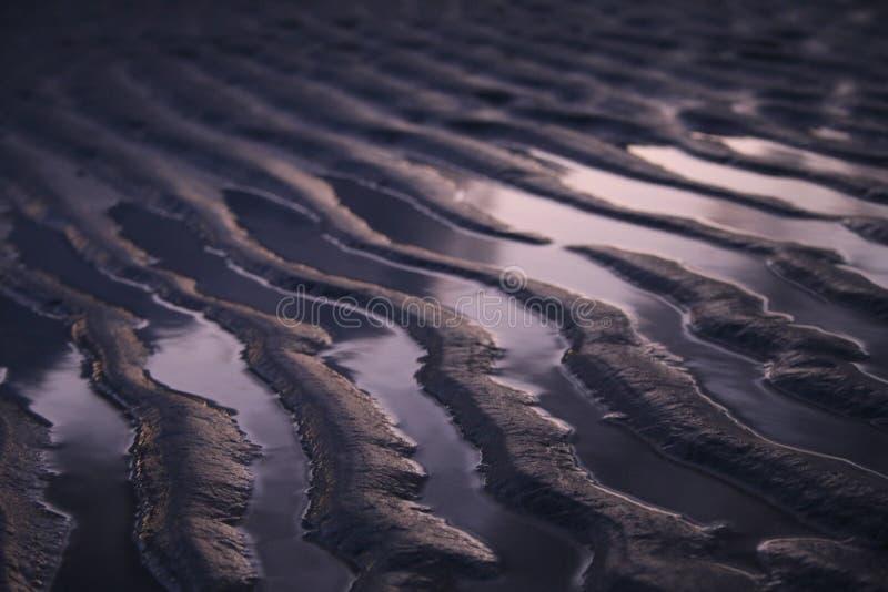 Cumes da areia na costa fotografia de stock