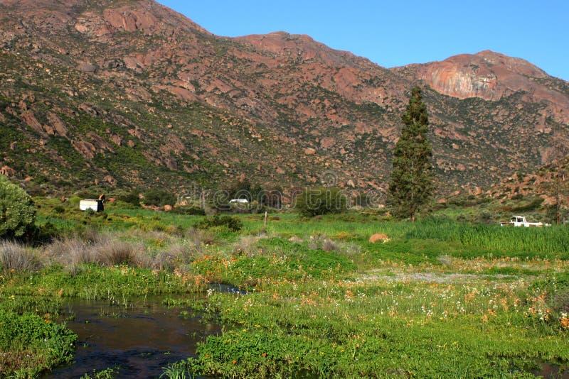 Cumes da montanha em Namakwaland, cabo do norte fotos de stock royalty free