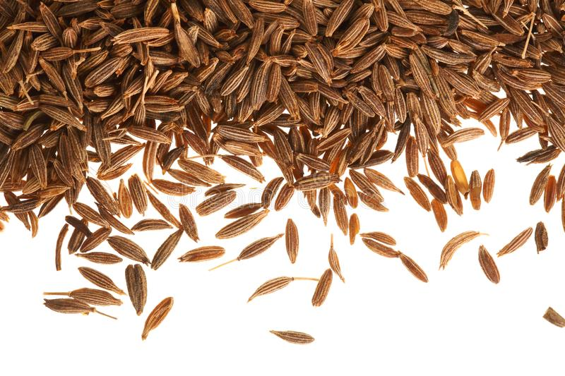 Cumin or caraway seeds isolated on white background. Top view.  stock photography