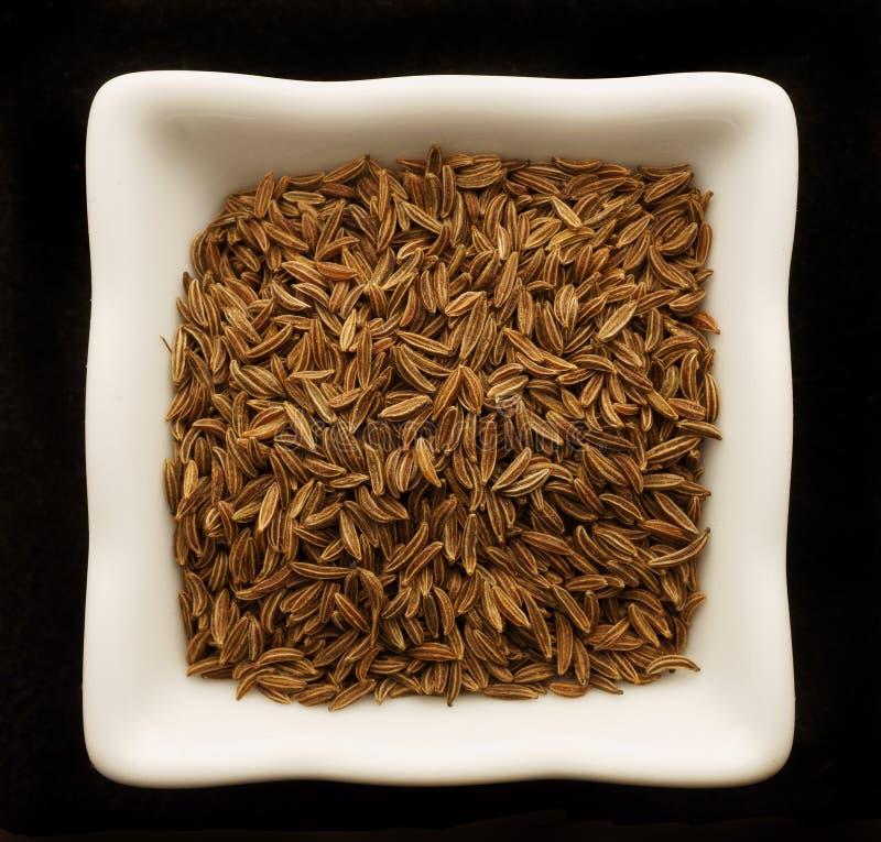 Cumin d'épice dans une cuvette en céramique. photo libre de droits