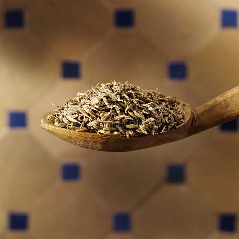 Free Cumin Seed Royalty Free Stock Images - 1020259