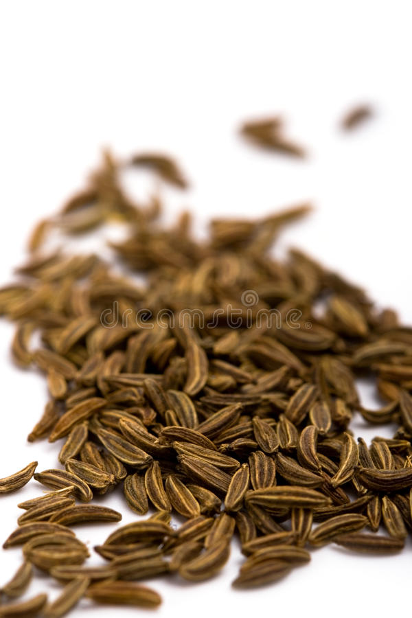 Free Cumin Seeds Royalty Free Stock Photo - 12684025