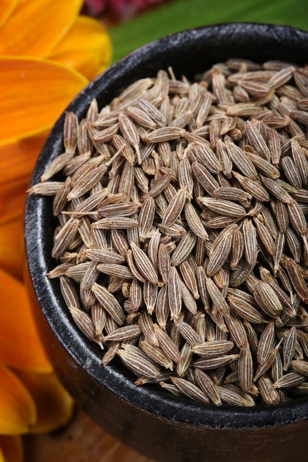 Cumin seeds. Beautiful shot of cumin seeds in bowl royalty free stock image